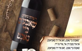Yehuda Galili | Jewish Insights