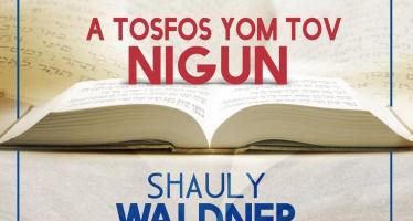 Shauly Waldner: The Tosfos Yom Tov Nigun – New Single