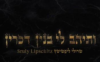 """Sruly Lipschitz Releases New Single """"Vesaihav Li"""""""
