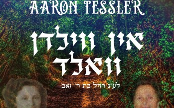 In Vilden Vald – Aaron Tessler feat Zemiros Choir