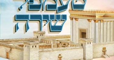 Duvid Pinches Roth – Temple Shira
