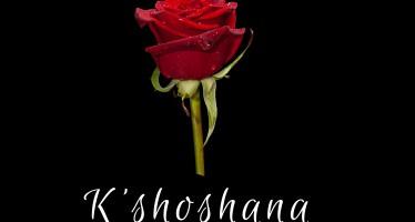 Yaakov Markowitz – K'Shoshana (A Capella Cover)