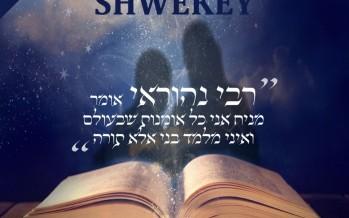 Yaakov Shwekey – Rabi Nehorai [Official Remix]