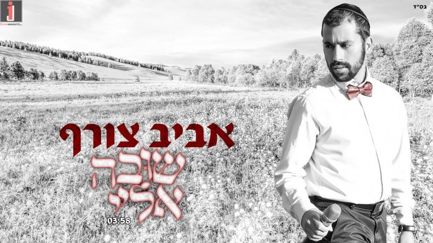 "Aviv Tzoref Releases His Second Single ""Shuva Eilay"""