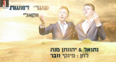 Netanel & Yonatan Menat – Shaarei Demaos [Acapella]