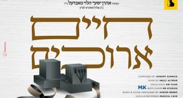 Chaim Areechim – Sruly Altman