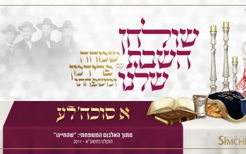 """A Sukkeleh"" By Simche Friedman & Family"
