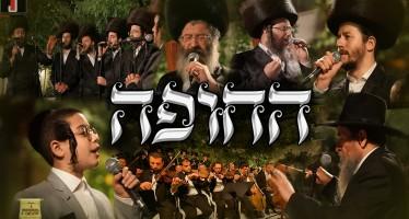 Chupah – Mona, Malchus, Gertner, Saal, Daskal