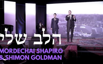 HaLev Sheli Performed by Mordechai Shapiro & Shimon Goldman at Chai Lifeline's 2019 Gala
