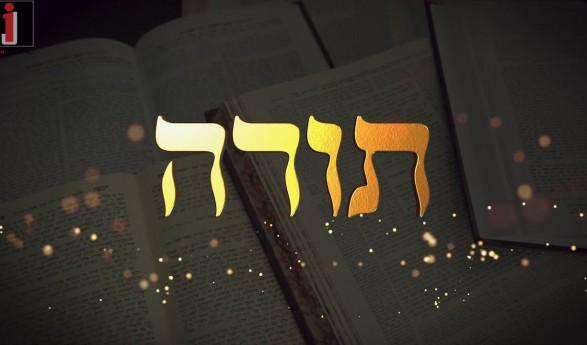 Shloime Dachs – Torah [Official Video]