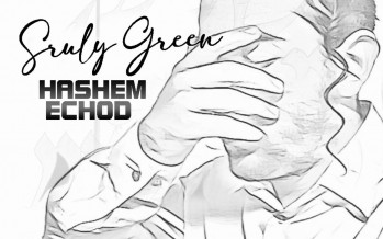 A New Single By Sruly Green – Hashem Echod⁣
