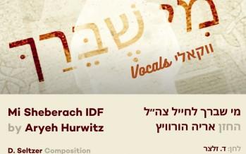 Aryeh Hurwitz – Mi Sheberach IDF Acapella