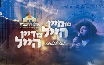 MUSIC: Mein Heil – Motty Ilowitz – Ohel Rashbi