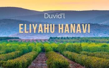 Duvid'l – ELIYAHU HANAVI