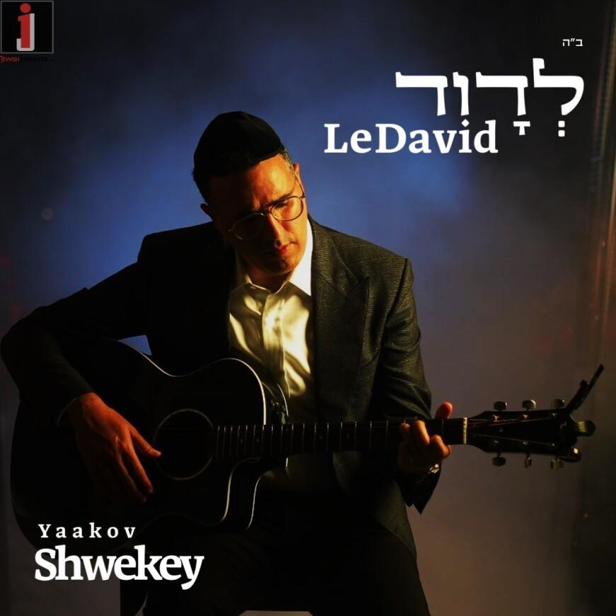 Yaakov Shwekey – LeDavid [Official Music Video]