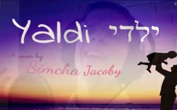 Yaldi | Simcha Jacoby (Avraham Fried & Amram Adar Cover)