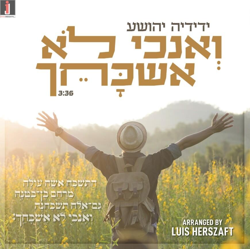 "Yedidya Yehoshua Releases A New Single With Words From The Haftaros of Nechama ""Veanochi Lo Eshkachech"""