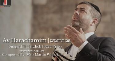 Av HaRachamim – Eli Herzlich – Martin Meir Widerker