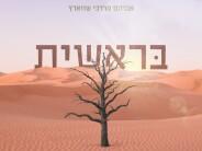 "Starting Over Again: ""Bereishis"" – A New Single From Avrum Mordche Schwartz"