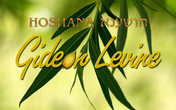 "Gideon Levine Releases A New Single For Hoshana Raba ""Hoshana"""