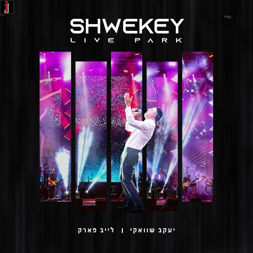 """Tadlik Es HaEish"" The First Clip From The Shwekey Live Park Show"