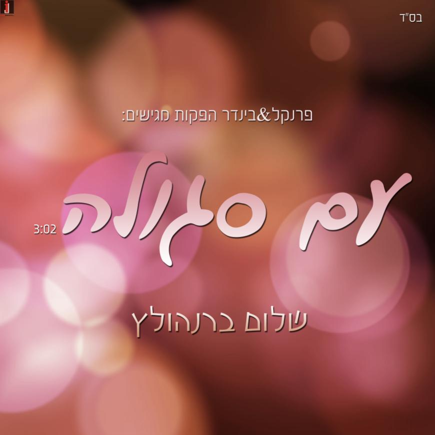 """The New Song From Shalom Bernholtz """"Am Segulah"""""""
