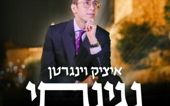 "The New Single From Yitzy Weingarten – ""Neginasi"""