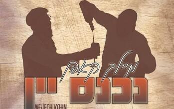 """Nichnas Yayin"" The Annual Purim Music Video By Meilech Kohn"