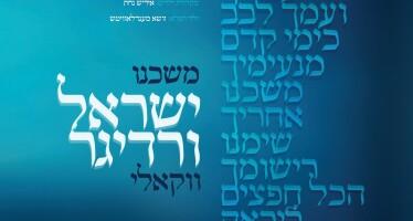 Yisroel Werdyger – Moshcheini Acapella