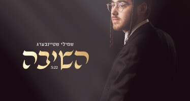 """Shmily Steinberg Releases His Debut Single: """"Hashivu"""""""