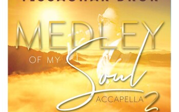 Medley Of My Soul 2 | Yissachar Dror ft. Ari Goldwag
