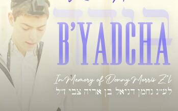 "RINAS AMCHA – B'Yadcha – A Tribute to Donny Morris z""l"
