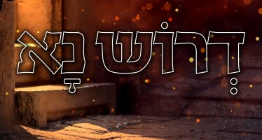 """Ohad Moskowitz In A New Single """"Deroish Na"""""""