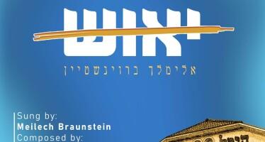 Meilech Braunstein – Yeush